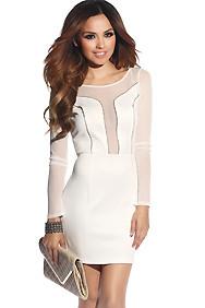 Sexy Zipper Cut-Out Long Sleeve Mesh Dress